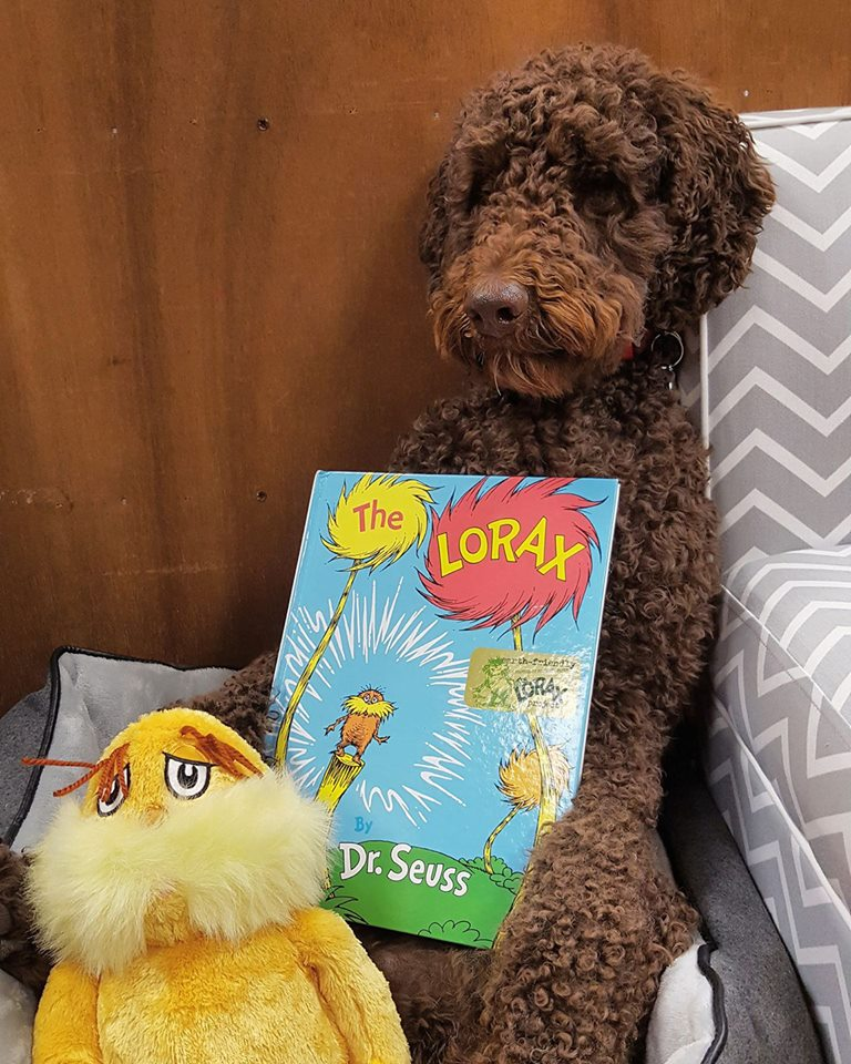 Murphy reads Dr. Seuss